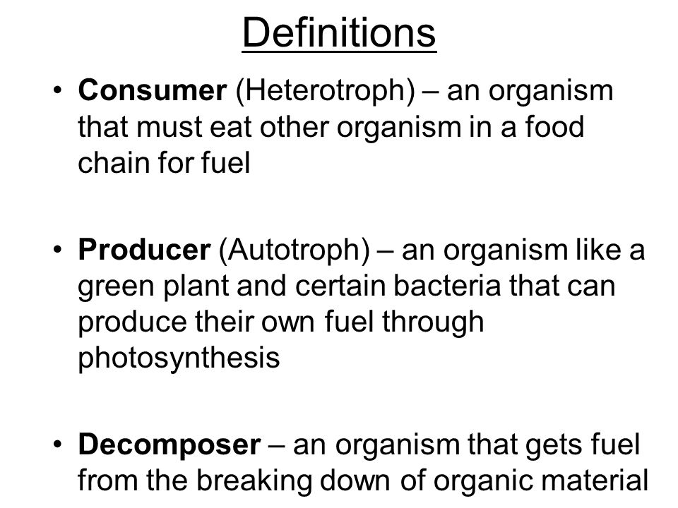 Definitions Consumer (Heterotroph) – an organism that must eat other organism in a food chain for fuel Producer (Autotroph) – an organism like a green