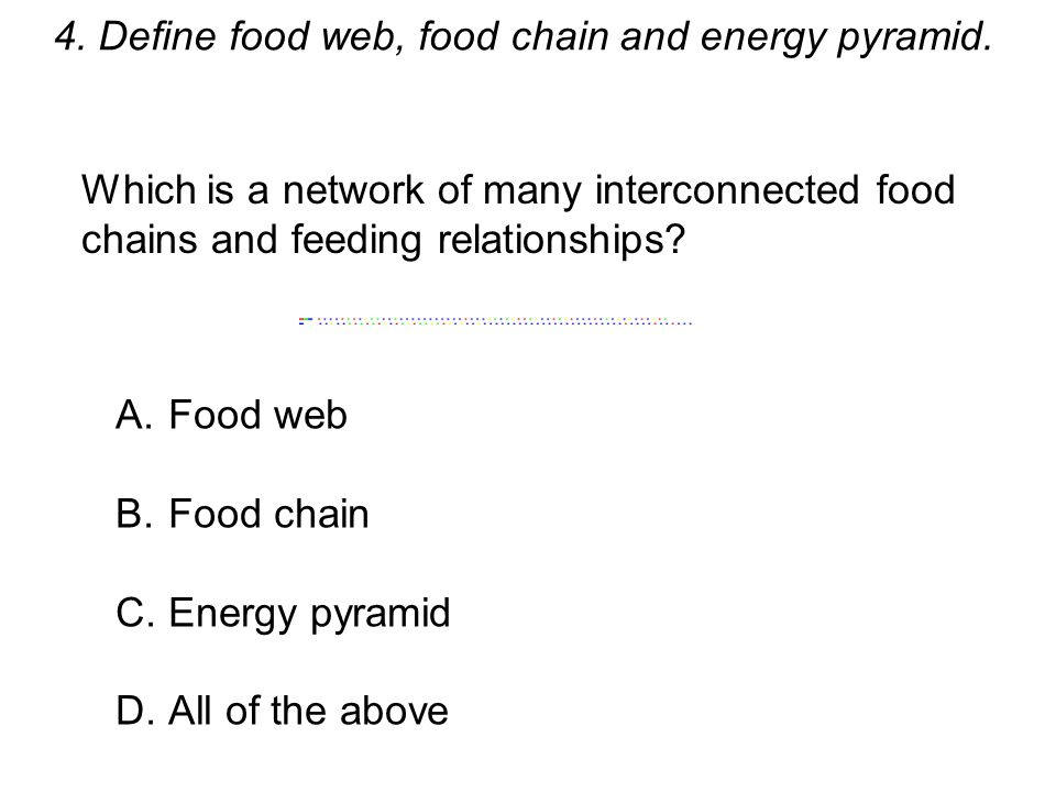 4. Define food web, food chain and energy pyramid. Which is a network of many interconnected food chains and feeding relationships? A.Food web B.Food