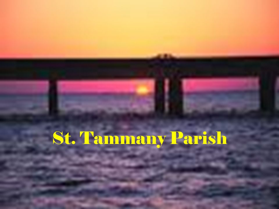 General Information Established in 1811 One of the Florida Parishes Named in honor of Chief Tammanend, a Delaware chief of the 17 th Century, who during the American Revolution was adopted by his admirers as their patron saint.