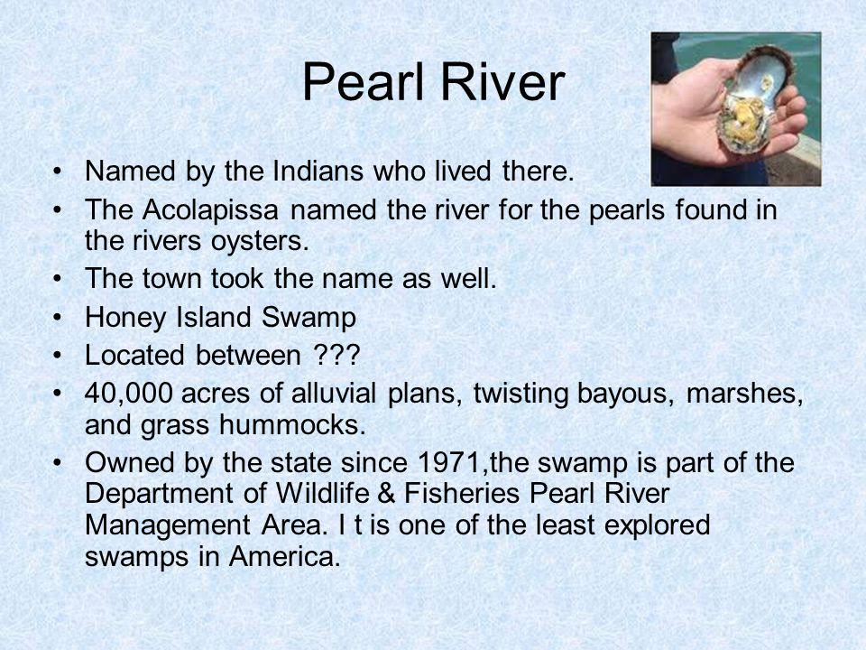 Pearl River Named by the Indians who lived there. The Acolapissa named the river for the pearls found in the rivers oysters. The town took the name as