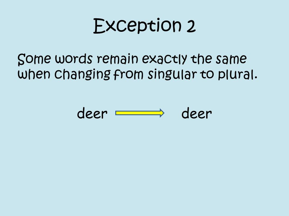 Exception 2 Some words remain exactly the same when changing from singular to plural. deer