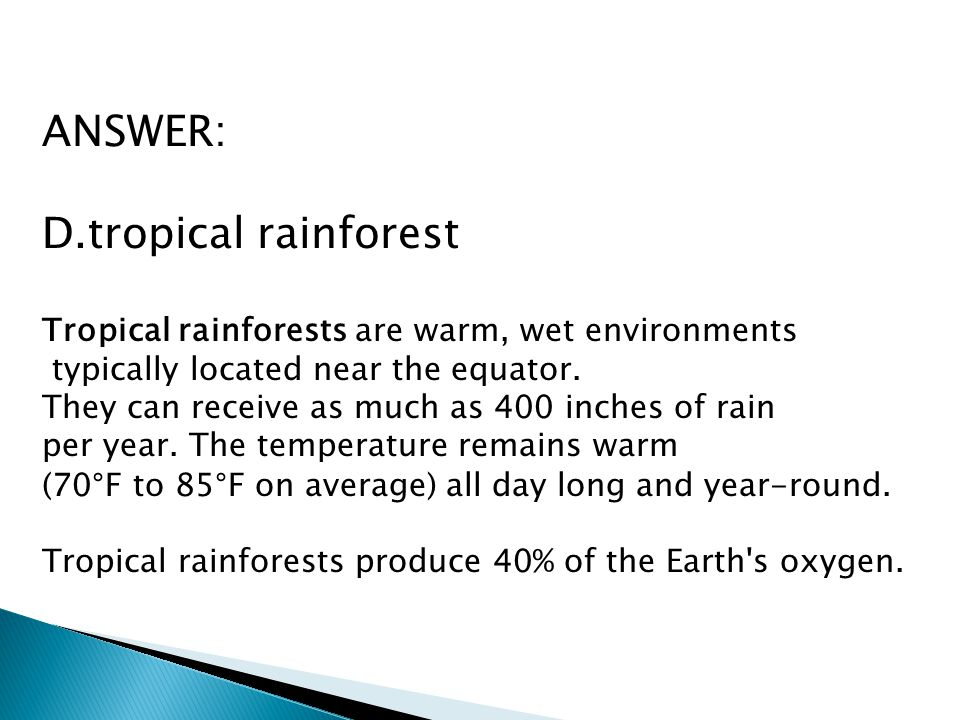 ANSWER: D.tropical rainforest Tropical rainforests are warm, wet environments typically located near the equator. They can receive as much as 400 inch