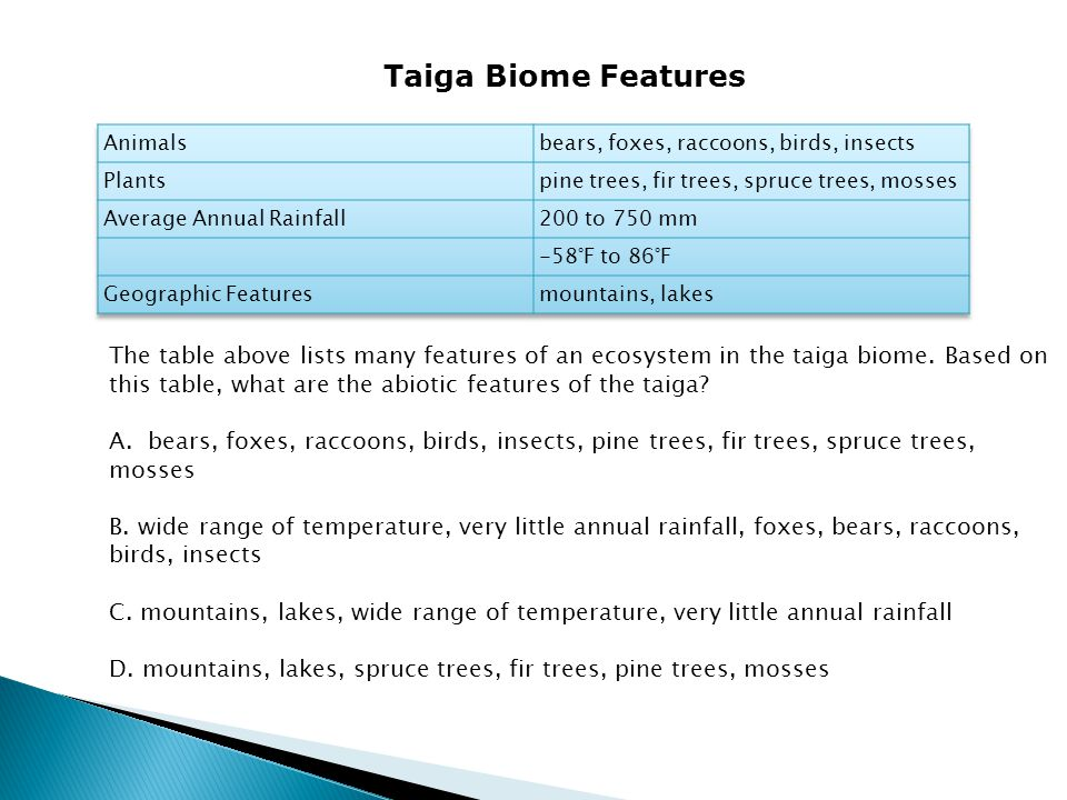 The table above lists many features of an ecosystem in the taiga biome. Based on this table, what are the abiotic features of the taiga? A. bears, fox