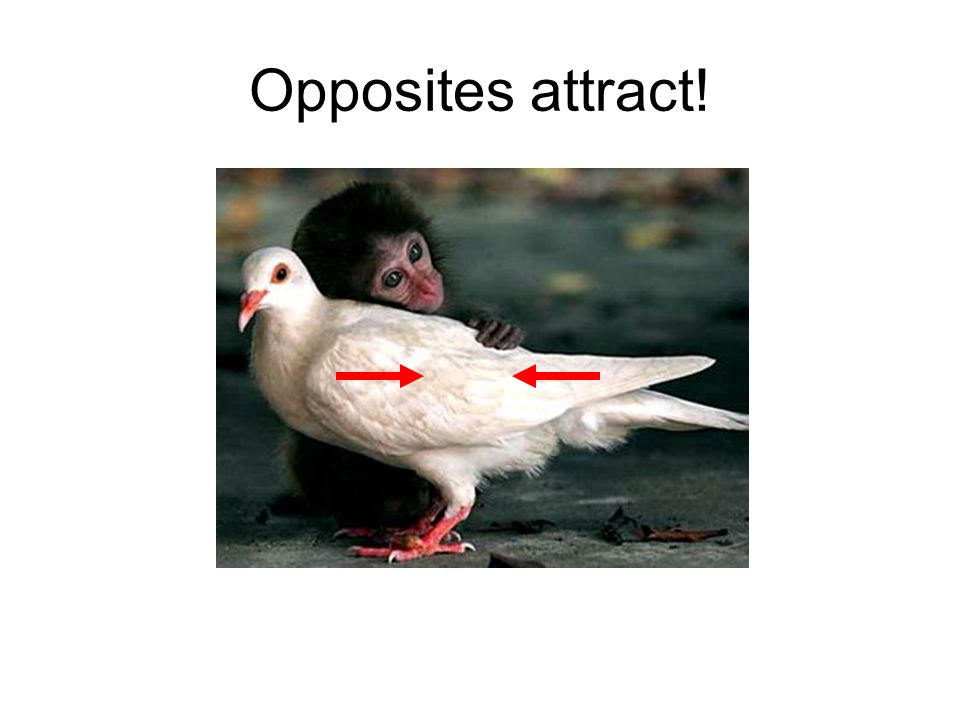 Opposites attract!