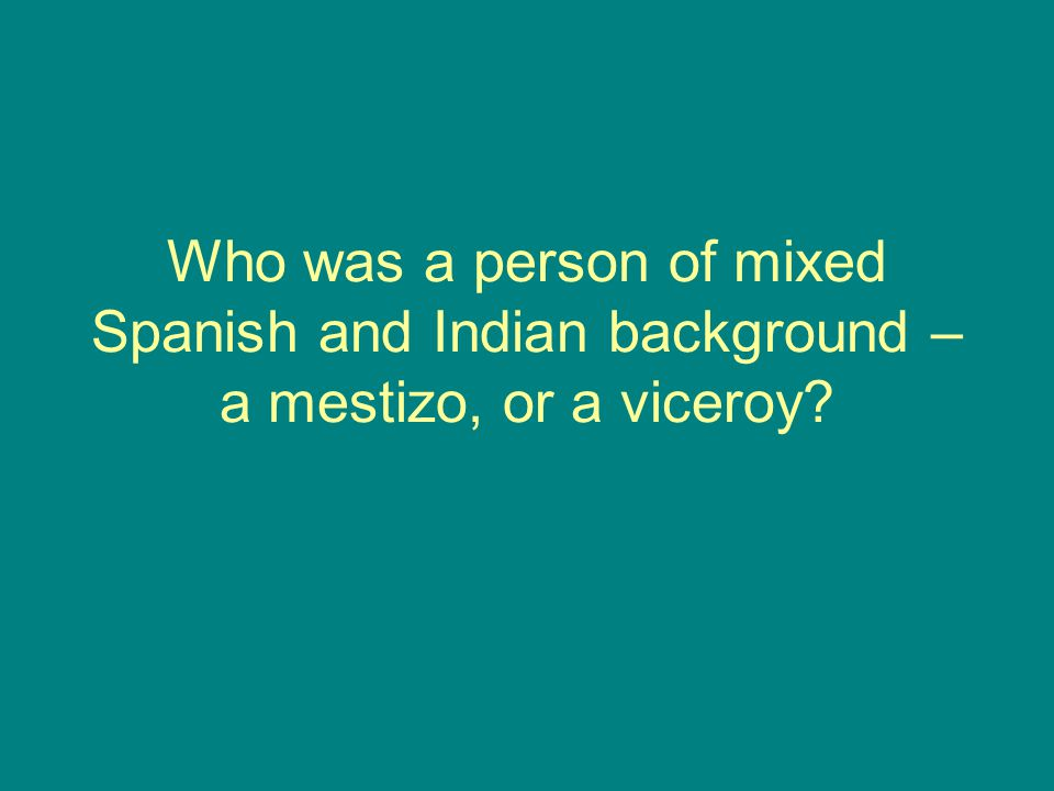 Who was a person of mixed Spanish and Indian background – a mestizo, or a viceroy?