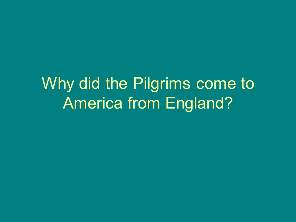 Why did the Pilgrims come to America from England?
