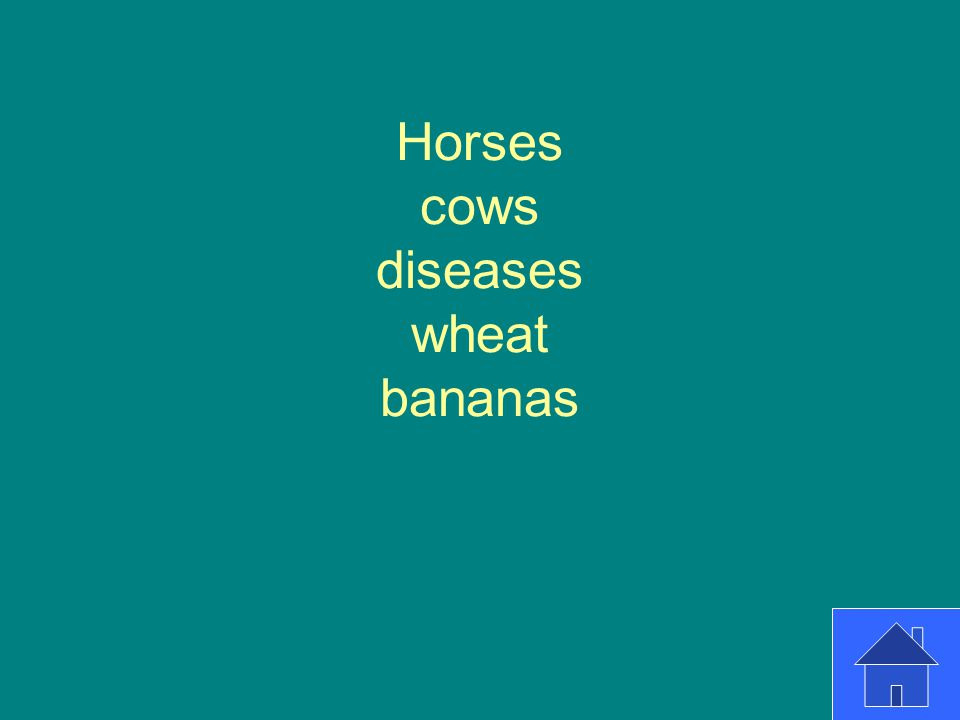Horses cows diseases wheat bananas