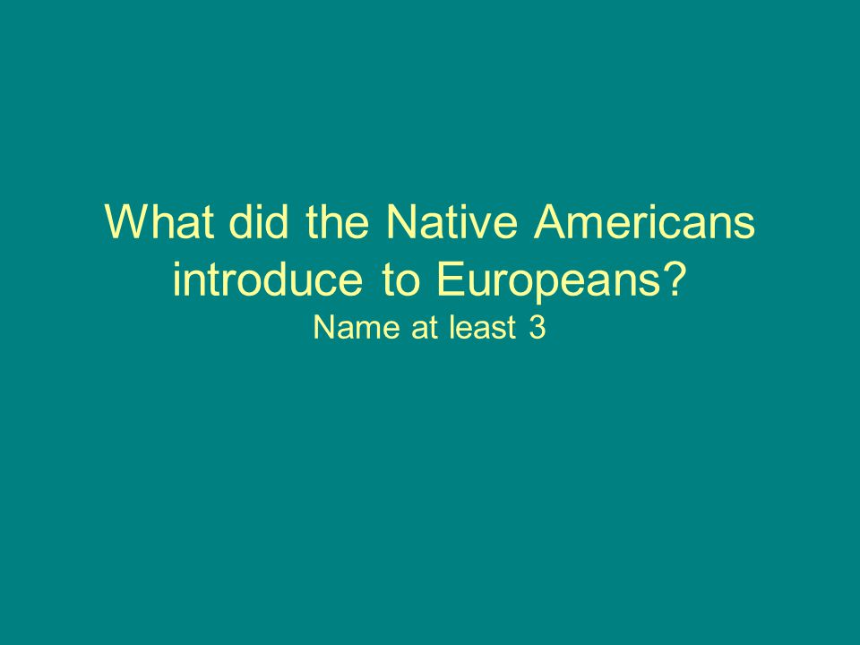 What did the Native Americans introduce to Europeans? Name at least 3
