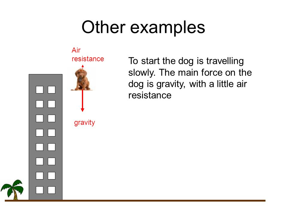 Other examples To start the dog is travelling slowly. The main force on the dog is gravity, with a little air resistance gravity Air resistance