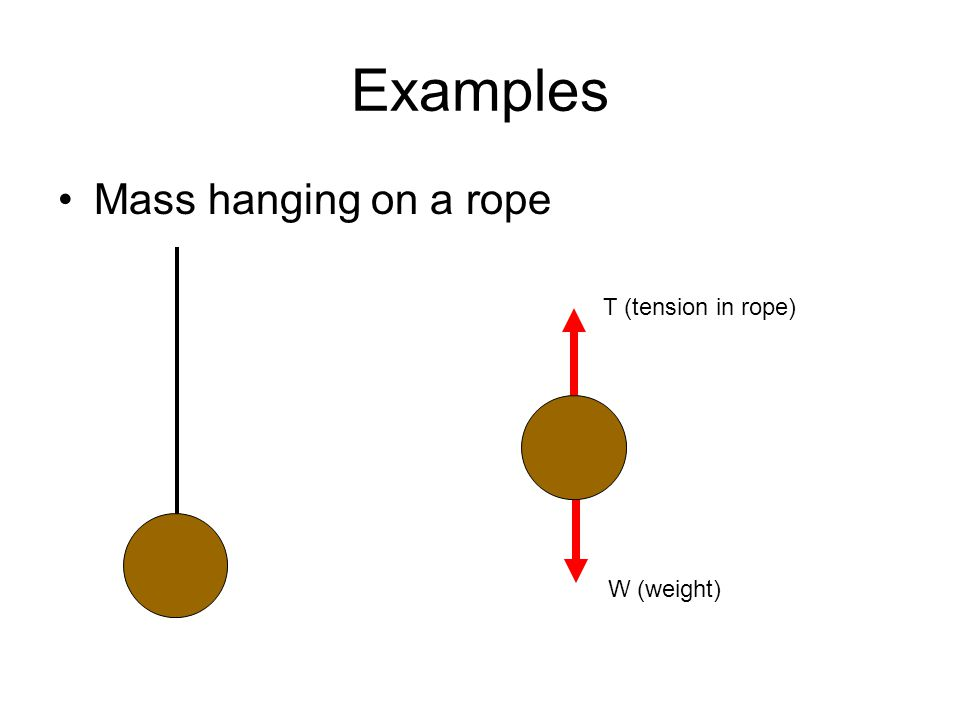 Examples Mass hanging on a rope W (weight) T (tension in rope)