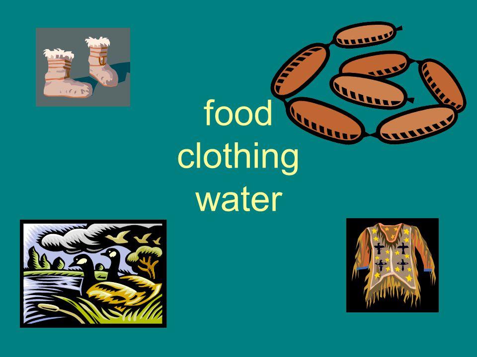 Describe the environment of the SW Desert region.