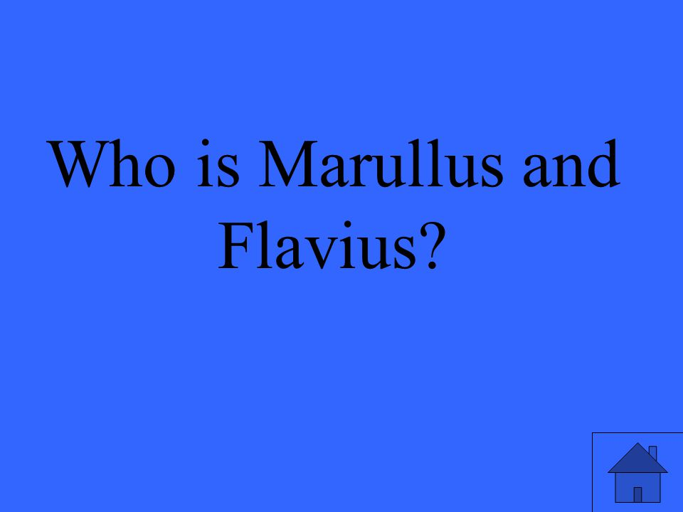 Who is Marullus and Flavius?