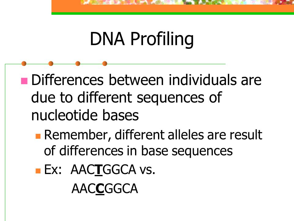 DNA Profiling Differences between individuals are due to different sequences of nucleotide bases Remember, different alleles are result of differences