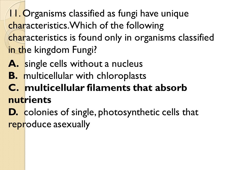 ANSWER KEY 1.C. Eukaryotes have a greater variety of genetic material than prokaryotes.