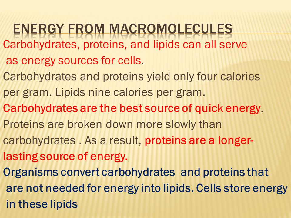 Carbohydrates, proteins, and lipids can all serve as energy sources for cells.