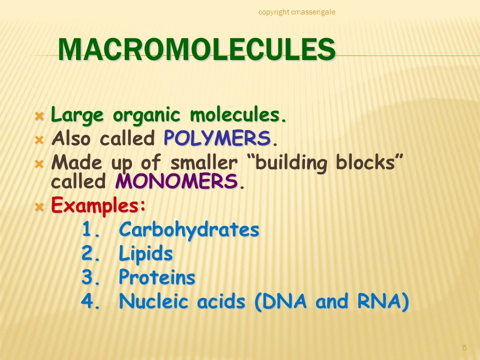5 MACROMOLECULES  Large organic molecules. POLYMERS  Also called POLYMERS.