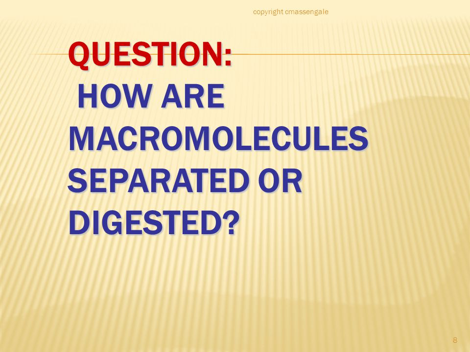 8 QUESTION: HOW ARE MACROMOLECULES SEPARATED OR DIGESTED copyright cmassengale