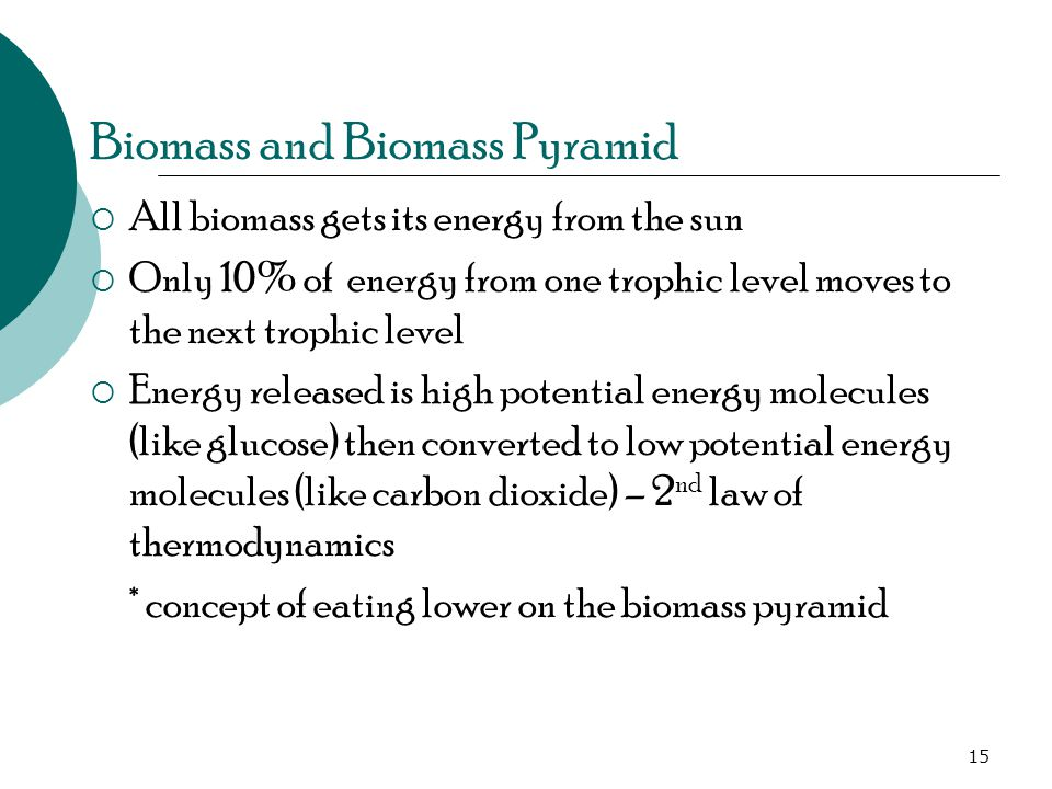 Biomass and Biomass Pyramid  All biomass gets its energy from the sun  Only 10% of energy from one trophic level moves to the next trophic level  Energy released is high potential energy molecules (like glucose) then converted to low potential energy molecules (like carbon dioxide) – 2 nd law of thermodynamics * concept of eating lower on the biomass pyramid 15