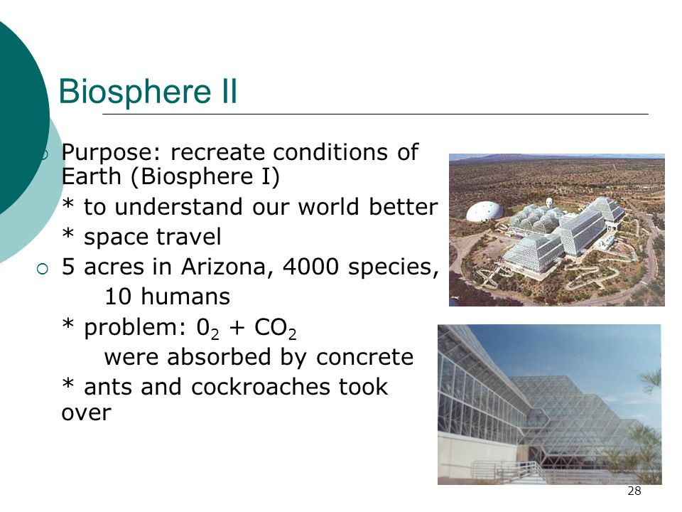 Biosphere II  Purpose: recreate conditions of Earth (Biosphere I) * to understand our world better * space travel  5 acres in Arizona, 4000 species, 10 humans * problem: 0 2 + CO 2 were absorbed by concrete * ants and cockroaches took over 28