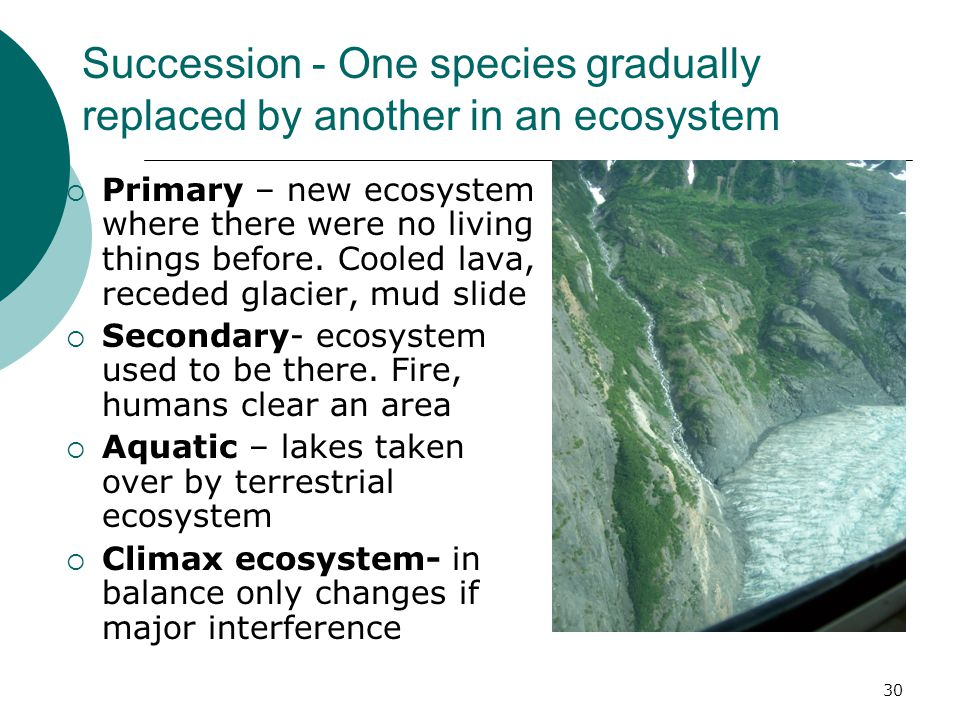 Succession - One species gradually replaced by another in an ecosystem  Primary – new ecosystem where there were no living things before.