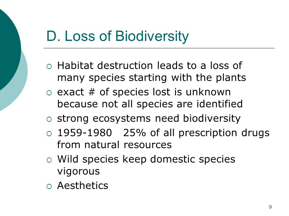 D. Loss of Biodiversity  Habitat destruction leads to a loss of many species starting with the plants  exact # of species lost is unknown because no