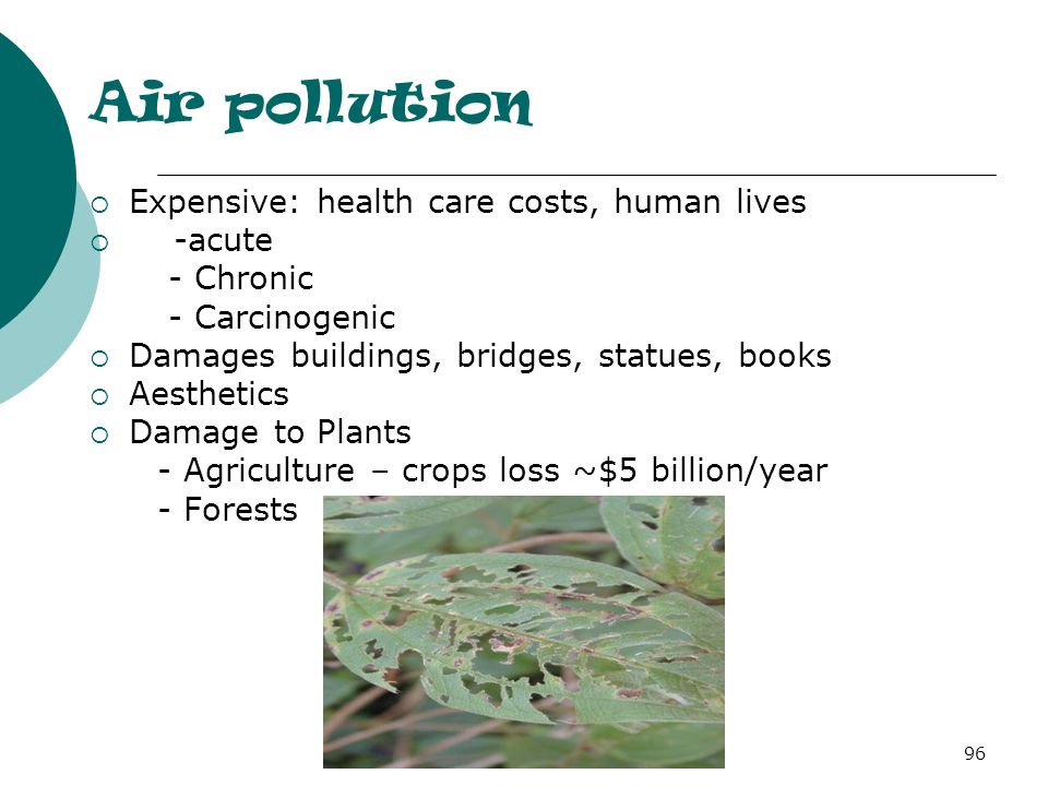 Air pollution  Expensive: health care costs, human lives  -acute - Chronic - Carcinogenic  Damages buildings, bridges, statues, books  Aesthetics  Damage to Plants - Agriculture – crops loss ~$5 billion/year - Forests 96