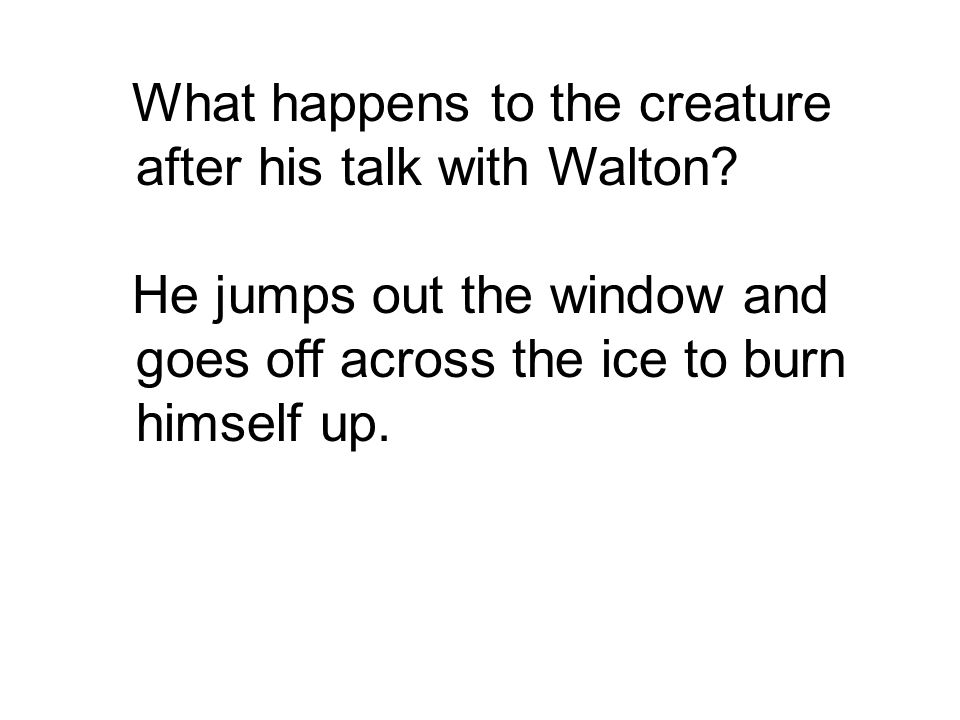 What happens to the creature after his talk with Walton.