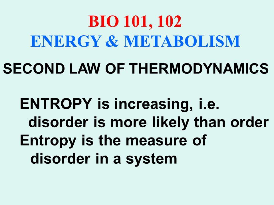 BIO 101, 102 ENERGY & METABOLISM Second Law of Thermodynamics