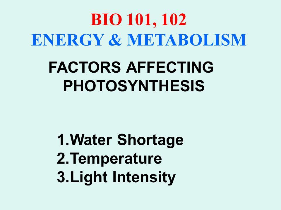 BIO 101, 102 ENERGY & METABOLISM PHOTORESPIRATION