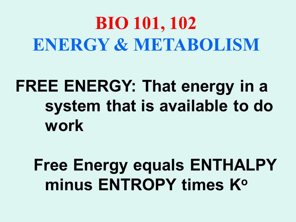 BIO 101, 102 ENERGY & METABOLISM Josiah Willard Gibbs Professor of Mathematics Yale University