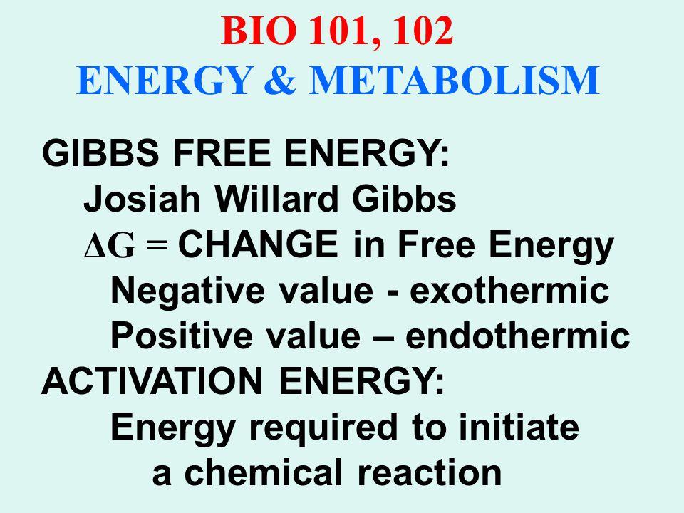 BIO 101, 102 ENERGY & METABOLISM CATALYSTS: Lower Activation nrg.