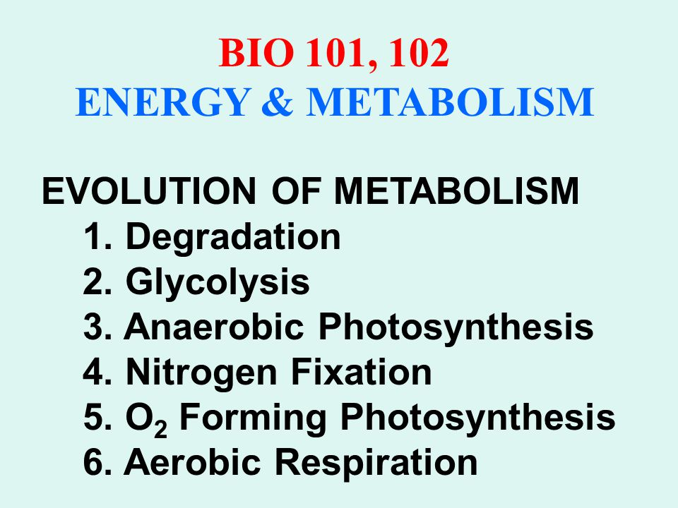 BIO 101, 102 ENERGY & METABOLISM GLUCOSE CATABOLISM A.STAGE I: GLYCOLYSIS B.STAGE II: PYRUVATE OXIDATION C.STAGE III: KREBS CYCLE D.STAGE IV: ELECTRON TRANSPORT