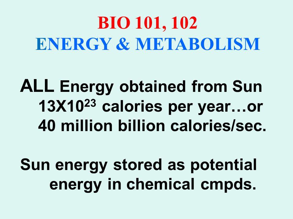 BIO 101, 102 ENERGY & METABOLISM Oxidation Reduction Reactions