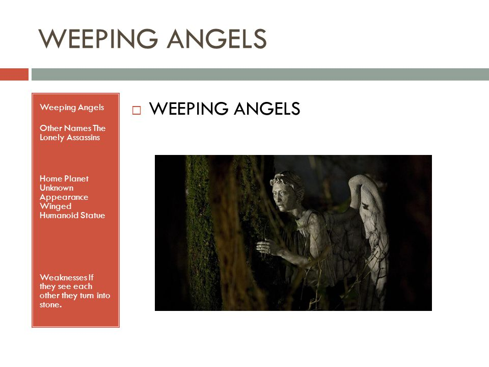 WEEPING ANGELS Weeping Angels Other Names The Lonely Assassins Home Planet Unknown Appearance Winged Humanoid Statue Weaknesses If they see each other they turn into stone.