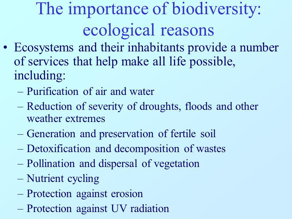 The importance of biodiversity: ethical reasons Humans feel connected to nature and other forms of life for its beauty and the sense of peace it gives.
