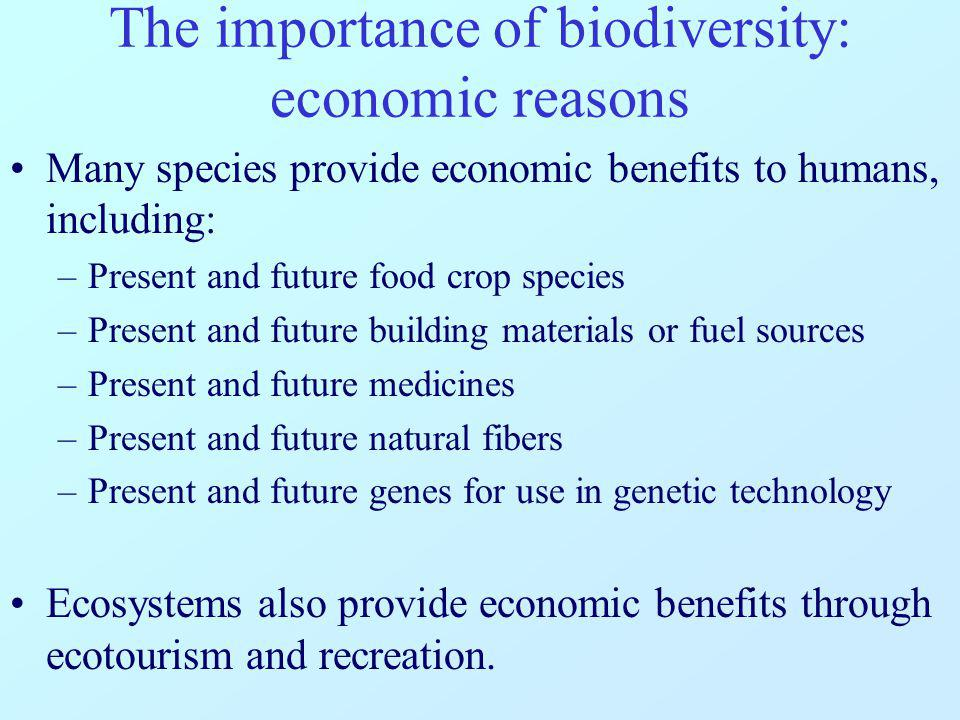 The importance of biodiversity: ecological reasons Ecosystems and their inhabitants provide a number of services that help make all life possible, including: –Purification of air and water –Reduction of severity of droughts, floods and other weather extremes –Generation and preservation of fertile soil –Detoxification and decomposition of wastes –Pollination and dispersal of vegetation –Nutrient cycling –Protection against erosion –Protection against UV radiation