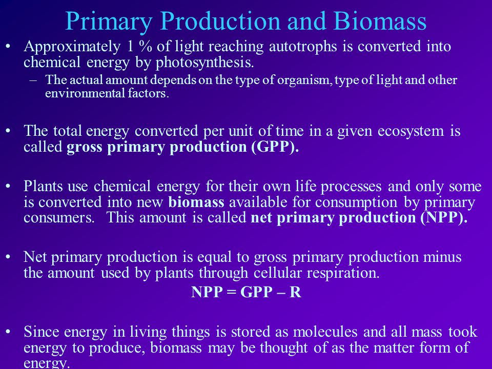 Primary Production and Biomass Approximately 1 % of light reaching autotrophs is converted into chemical energy by photosynthesis.