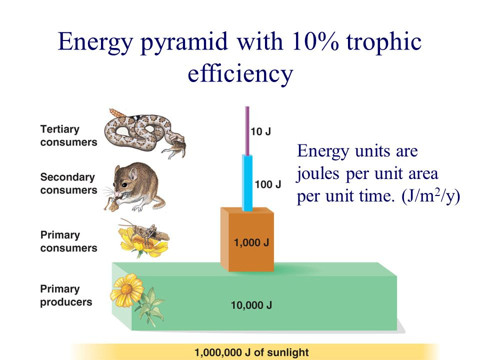 Energy units are joules per unit area per unit time.