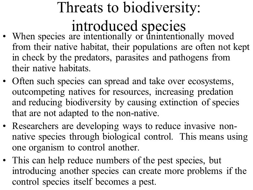 Threats to biodiversity: introduced species When species are intentionally or unintentionally moved from their native habitat, their populations are often not kept in check by the predators, parasites and pathogens from their native habitats.