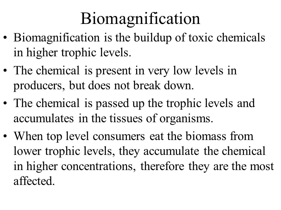 Biomagnification Biomagnification is the buildup of toxic chemicals in higher trophic levels.