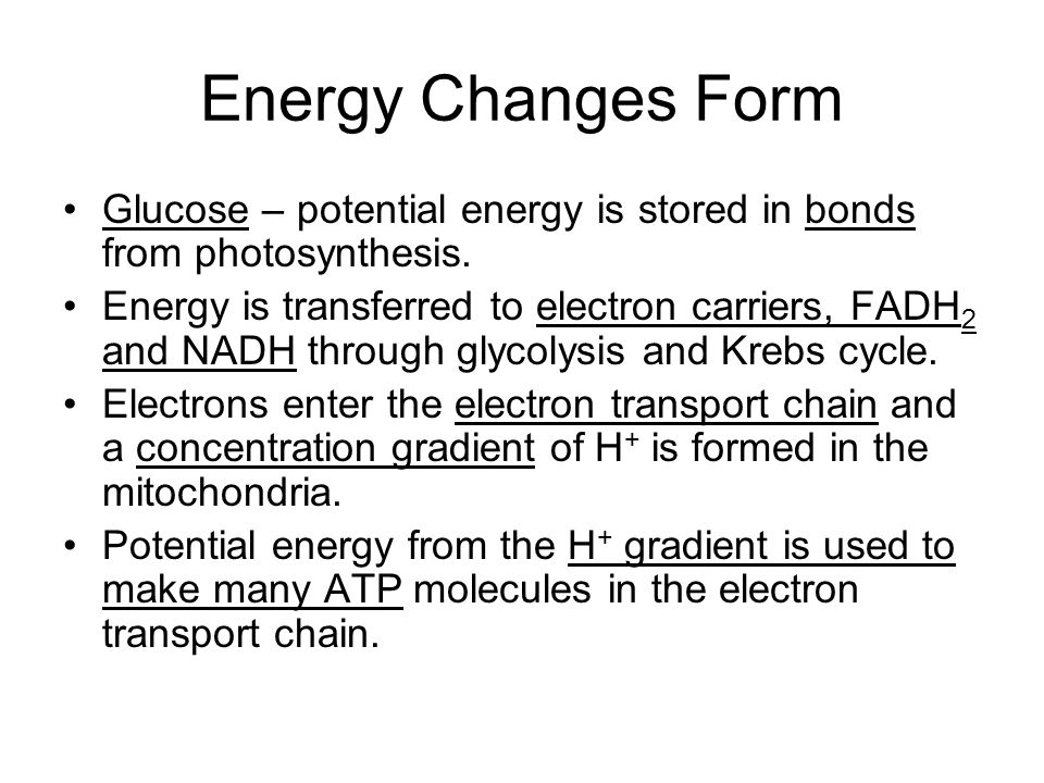 Why all the steps.Why can't the cell use energy straight from glucose.