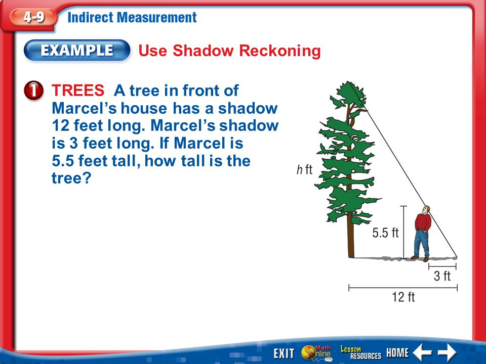Example 1 Use Shadow Reckoning TREES A tree in front of Marcel's house has a shadow 12 feet long.
