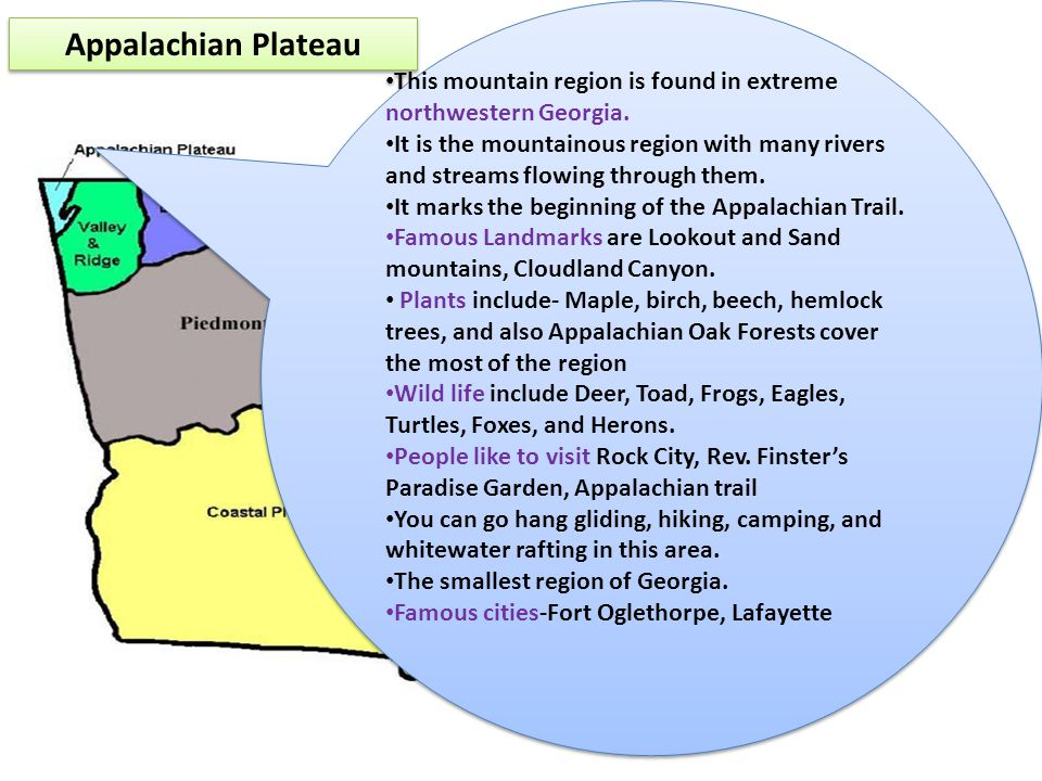 Appalachian Plateau This mountain region is found in extreme northwestern Georgia. It is the mountainous region with many rivers and streams flowing t