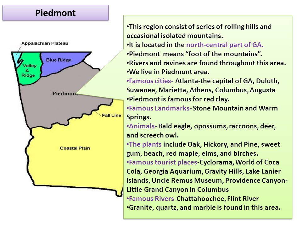 Piedmont This region consist of series of rolling hills and occasional isolated mountains. It is located in the north-central part of GA. Piedmont mea
