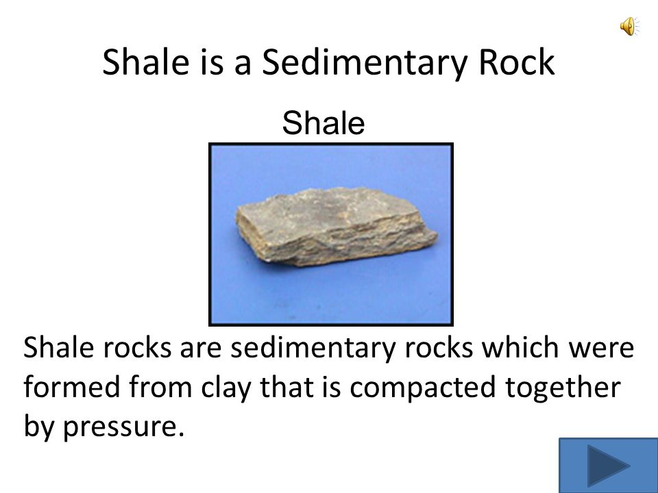 2 Types of Sedimentary Rocks ShaleLimestone Go to Igneous Rocks
