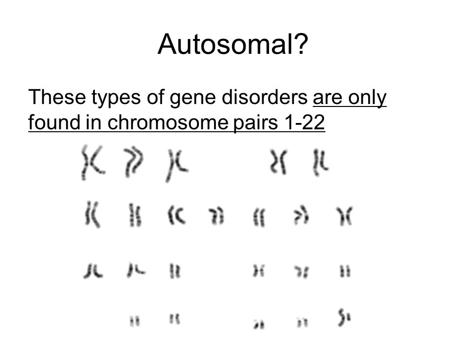 Autosomal? These types of gene disorders are only found in chromosome pairs 1-22