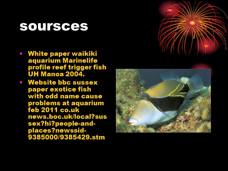 soursces White paper waikiki aquarium Marinelife profile reef trigger fish UH Manoa 2004.