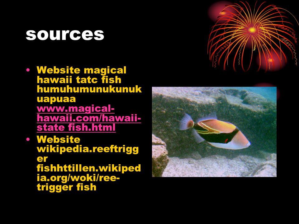 sources Website magical hawaii tatc fish humuhumunukunuk uapuaa www.magical- hawaii.com/hawaii- state fish.html www.magical- hawaii.com/hawaii- state fish.html Website wikipedia.reeftrigg er fishhttillen.wikiped ia.org/woki/ree- trigger fish