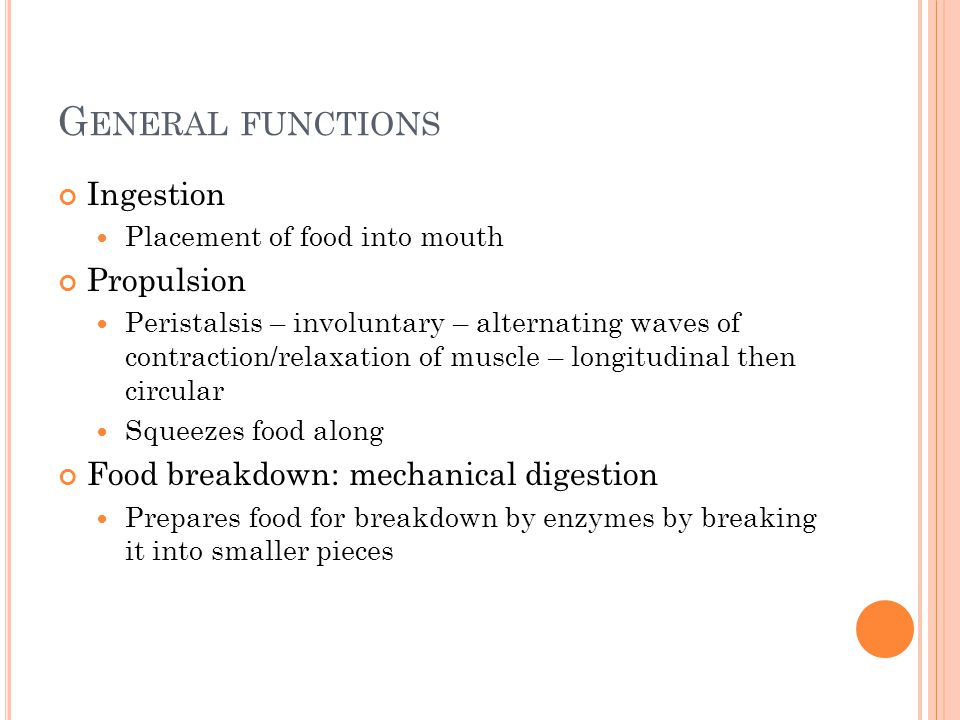G ENERAL FUNCTIONS Ingestion Placement of food into mouth Propulsion Peristalsis – involuntary – alternating waves of contraction/relaxation of muscle – longitudinal then circular Squeezes food along Food breakdown: mechanical digestion Prepares food for breakdown by enzymes by breaking it into smaller pieces