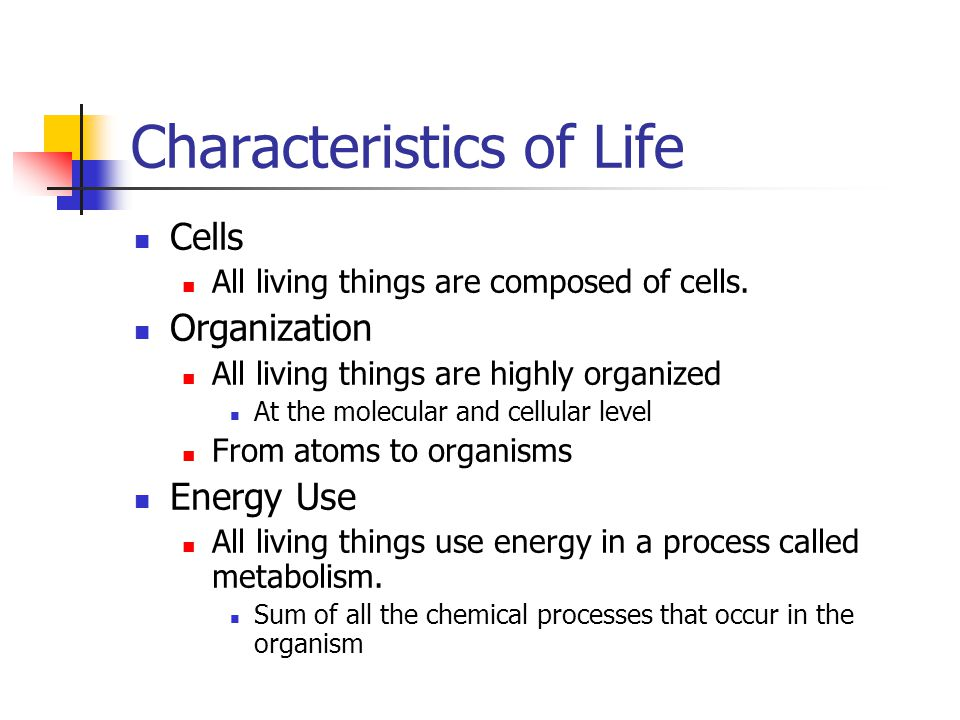 Characteristics of Life Cells All living things are composed of cells. Organization All living things are highly organized At the molecular and cellul